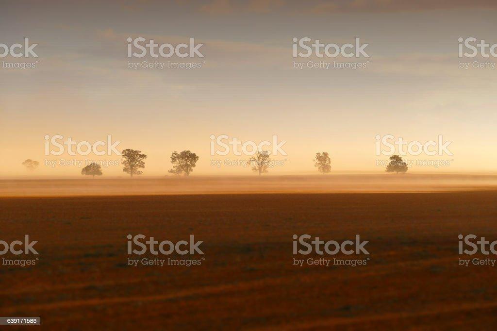 Dust Storm stock photo