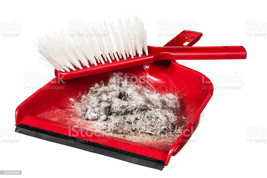 Dustpan and Brush isolated on white stock photo