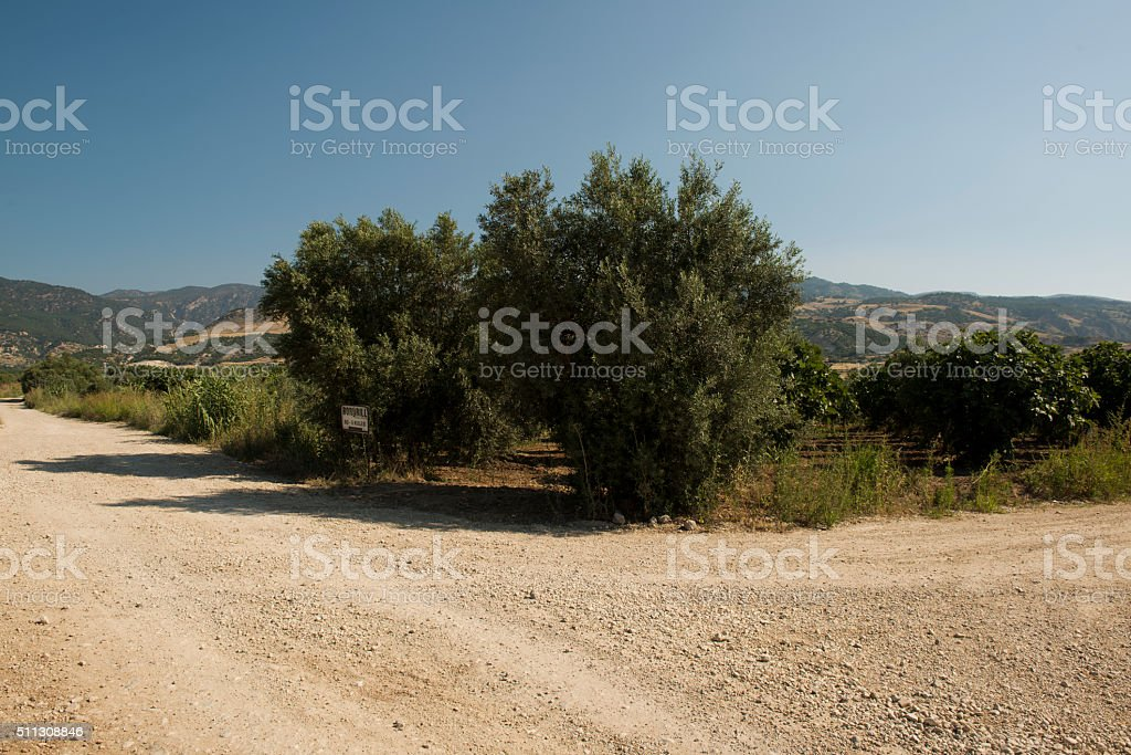 Dusty road in the countryside, Turkey stock photo