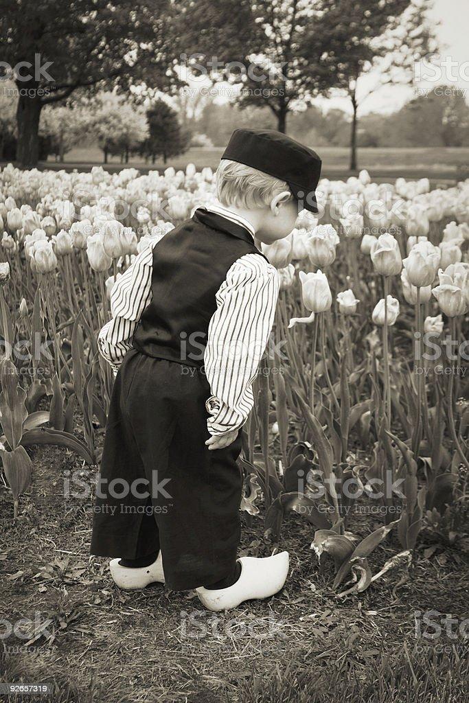 Dutch Boy Smelling Tulips Black and White stock photo