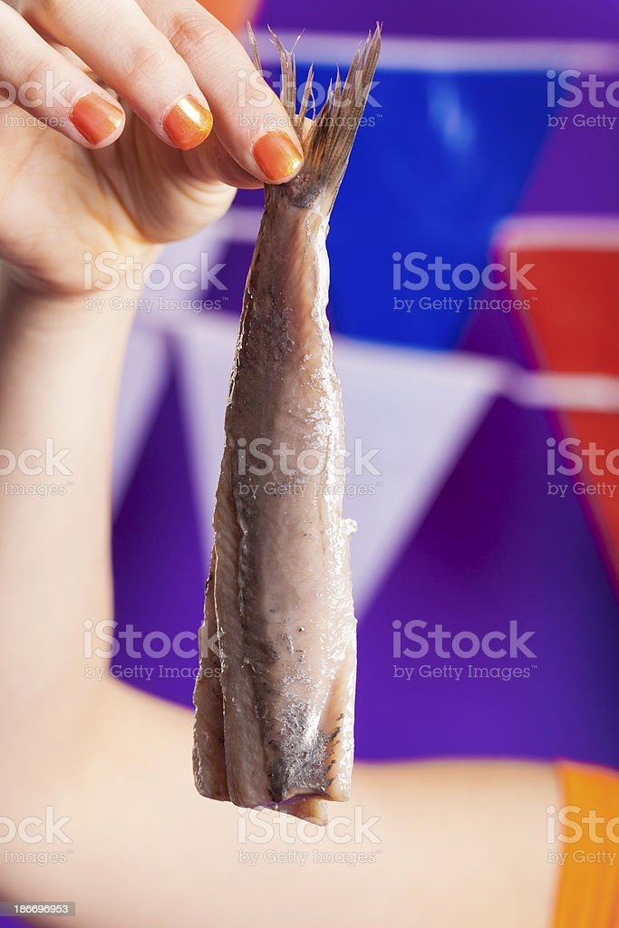 Dutch Brined herring stock photo