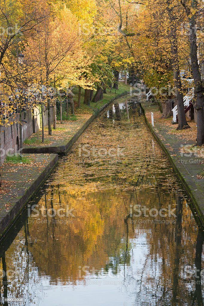 Dutch canal covered with leafs in Autumn - Utrecht, Netherlands stock photo