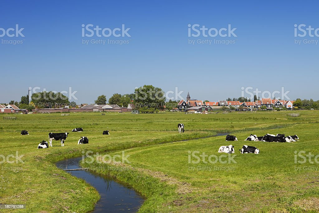 Dutch country landscape on a clear sunny day stock photo