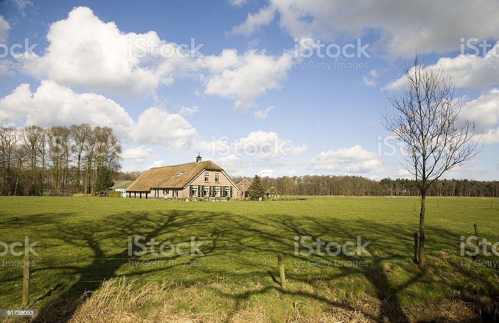 Dutch farm house stock photo