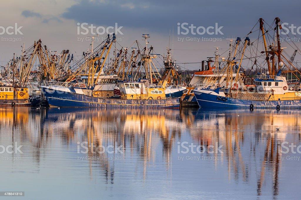 Dutch Fishery in Lauwersoog harbor stock photo