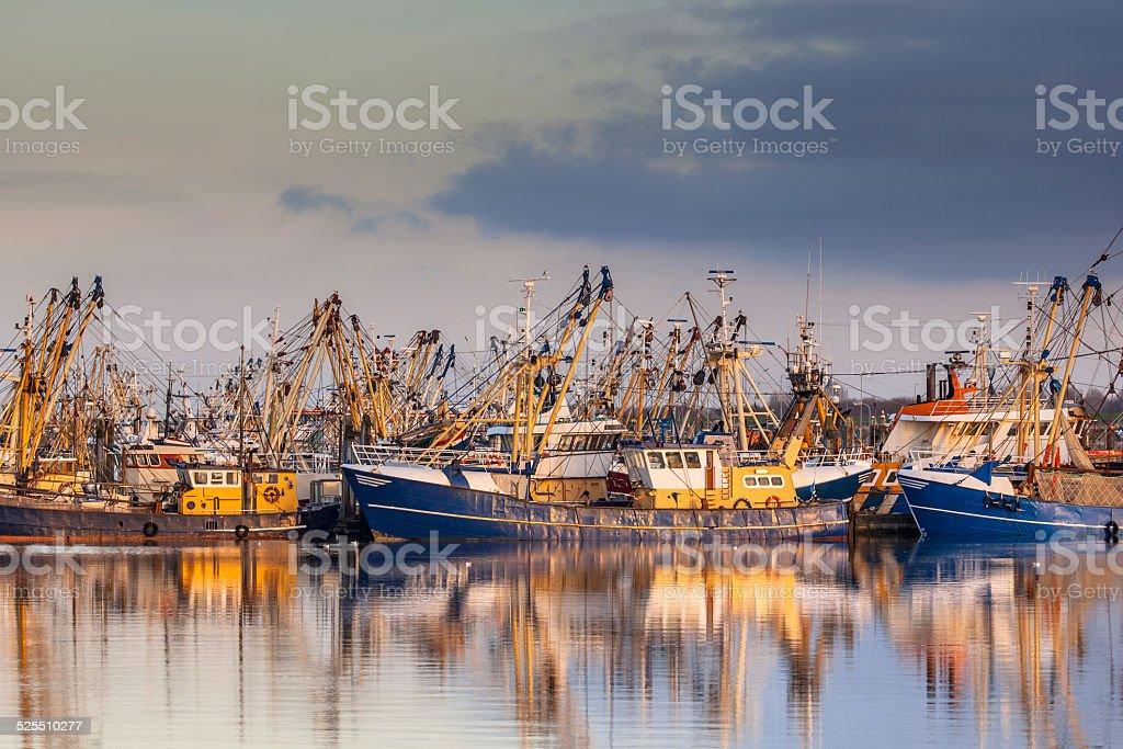 Dutch fishing fleet during majestic sunset stock photo