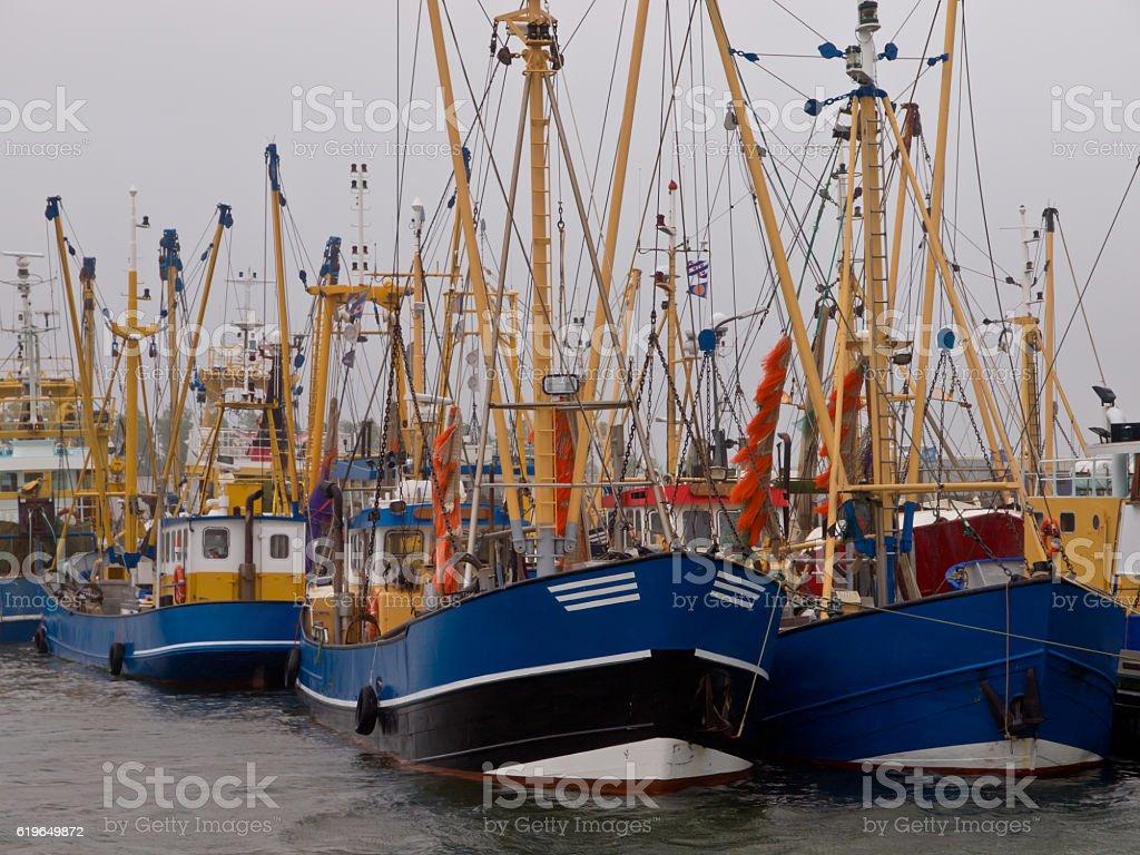 dutch fishing fleet lauwersoog stock photo