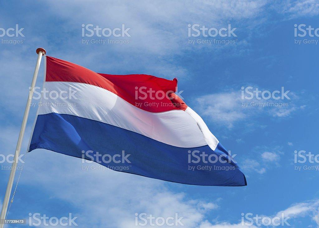 dutch flag stock photo