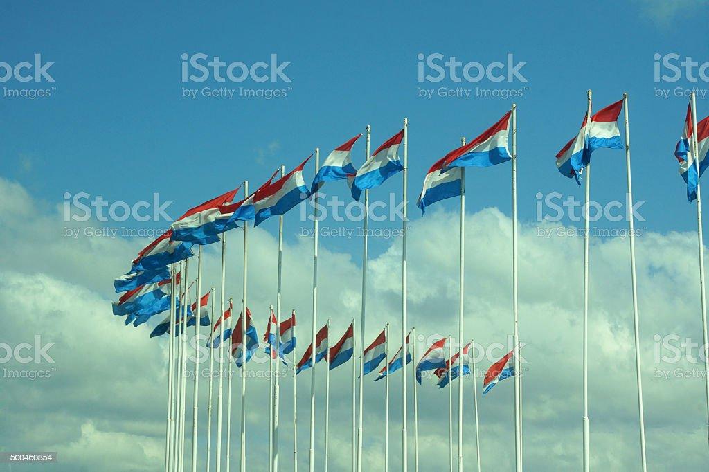 Dutch Flags stock photo