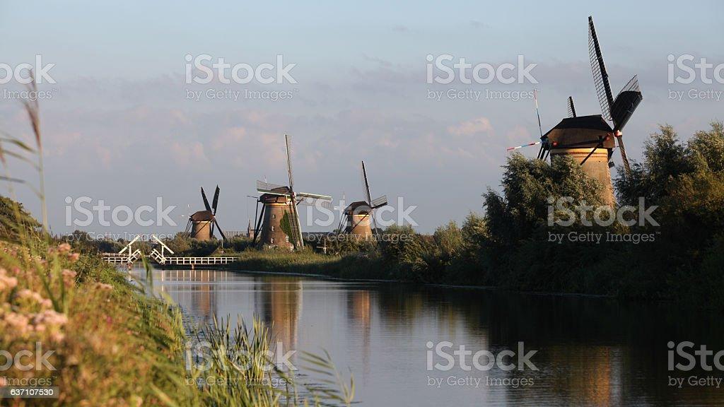 Dutch Holland windmill field canal sunset, Netherlands stock photo