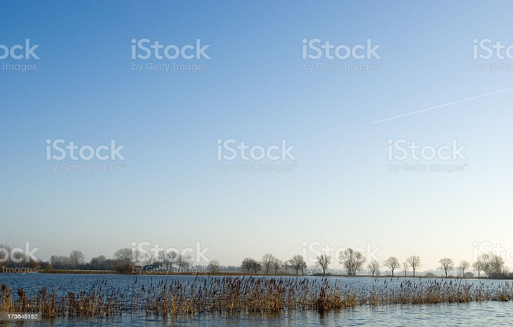 Dutch Landscape: Flooded River IJssel with Reed royalty-free stock photo