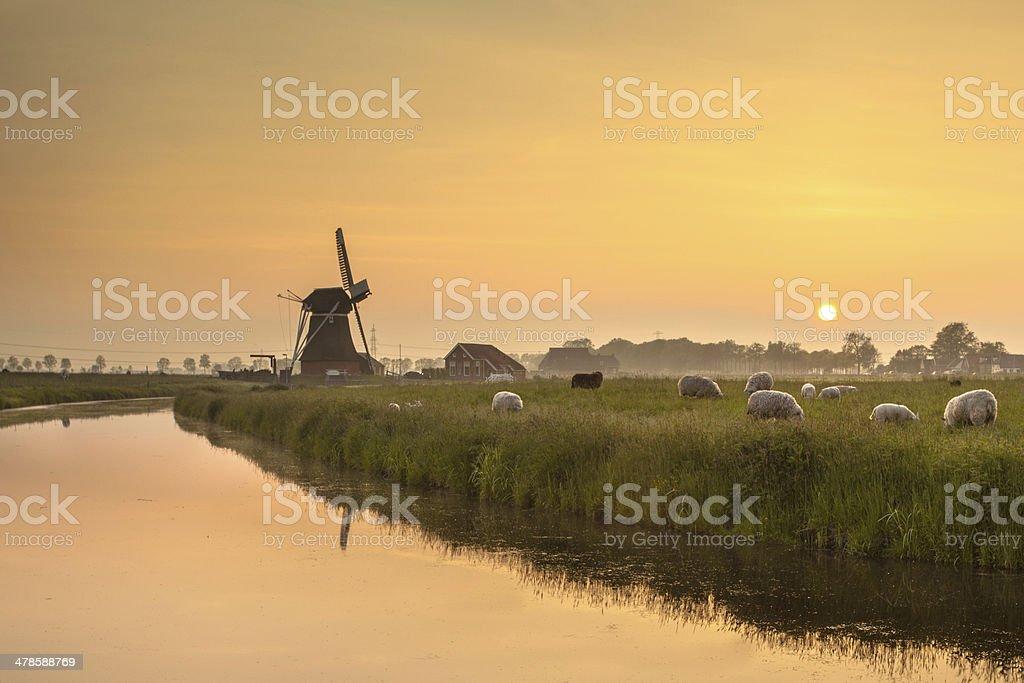 Dutch Polder Landscape during Orange Sunset stock photo