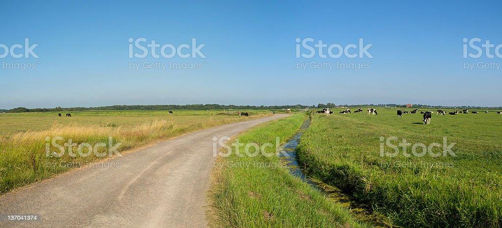 Dutch polder landscape royalty-free stock photo