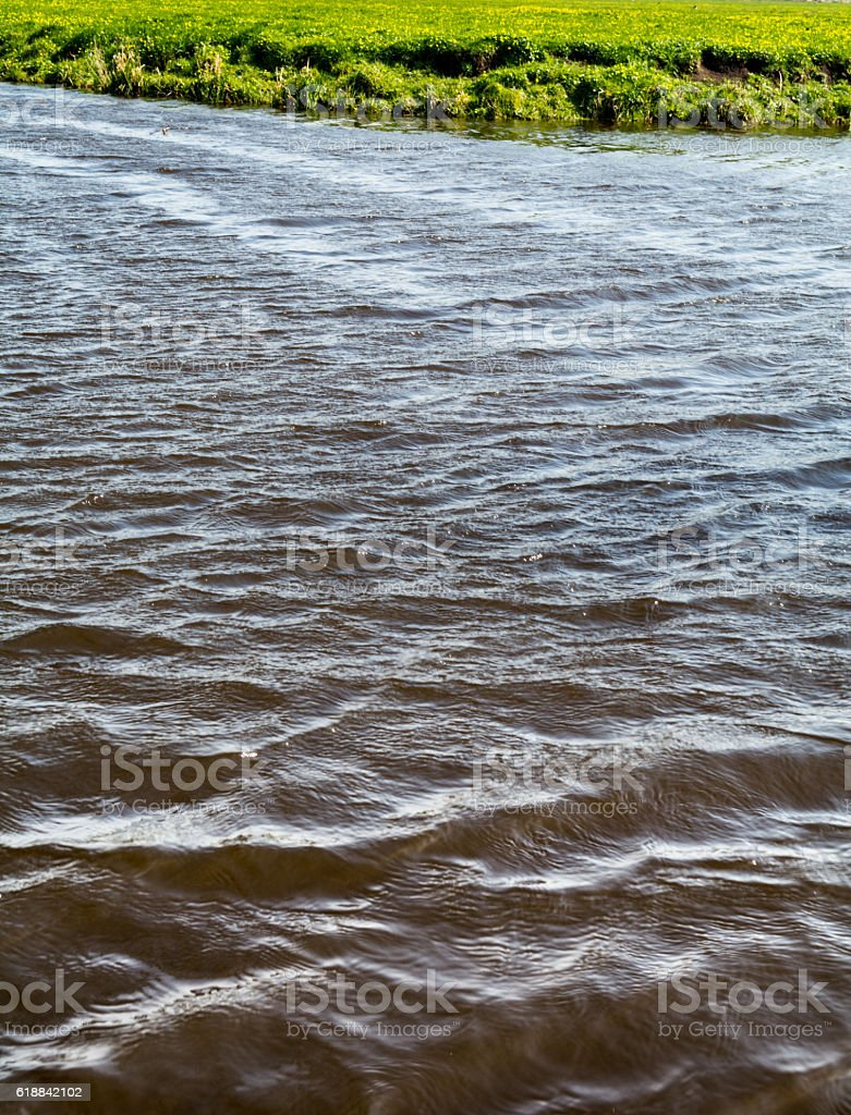 dutch polder meadow and ditch with hard wind wavepattern stock photo