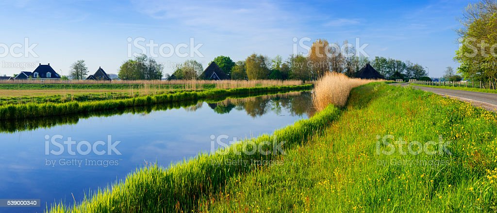Dutch Polder Scene stock photo