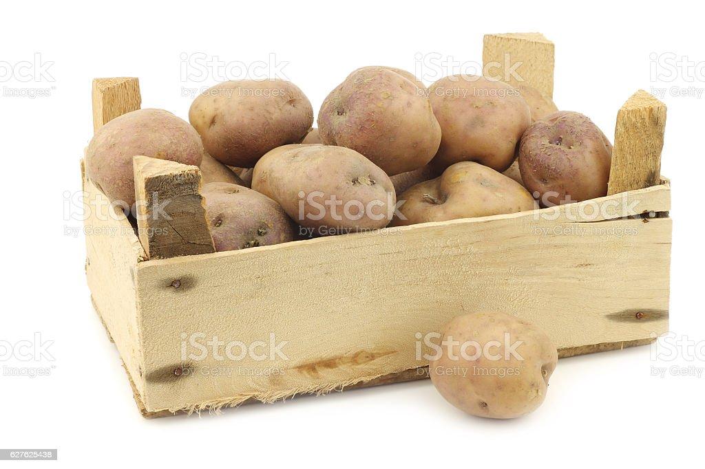 dutch potatoes called 'Koopmans Blue' stock photo