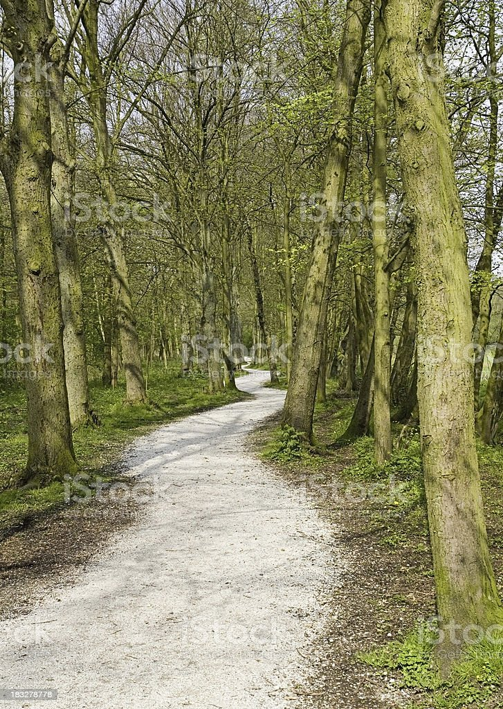 Dutch winding footpath royalty-free stock photo