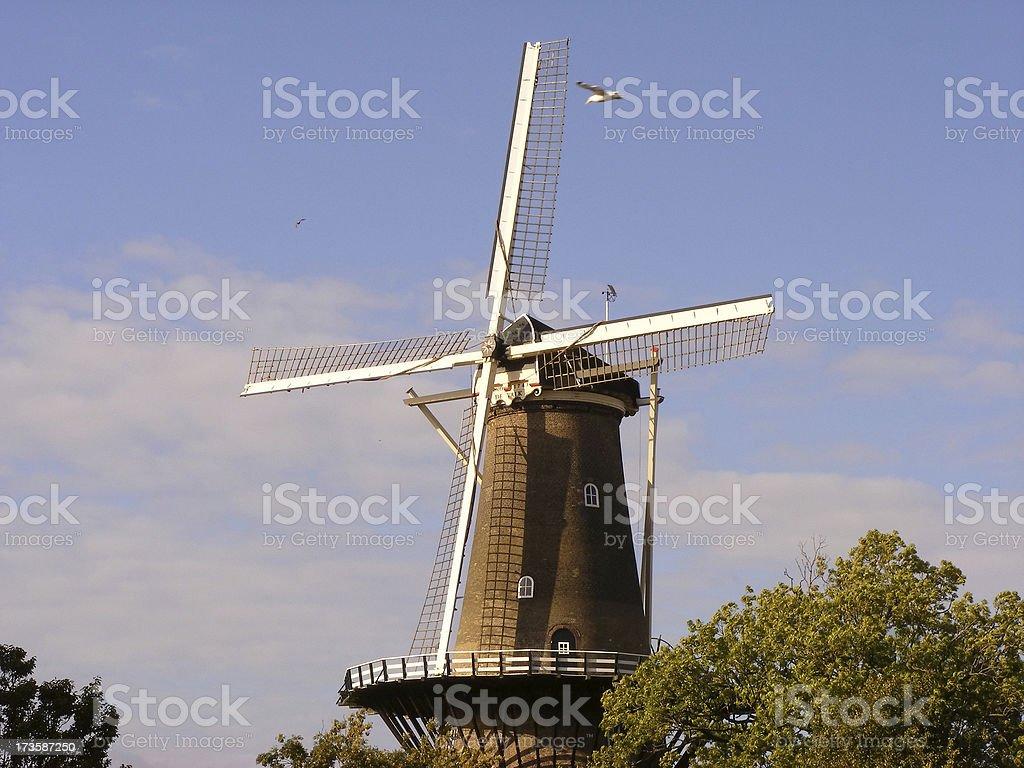 Dutch windmill at sunset stock photo