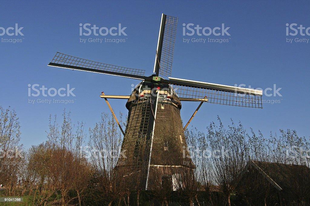 Dutch windmill blue sky 3 royalty-free stock photo