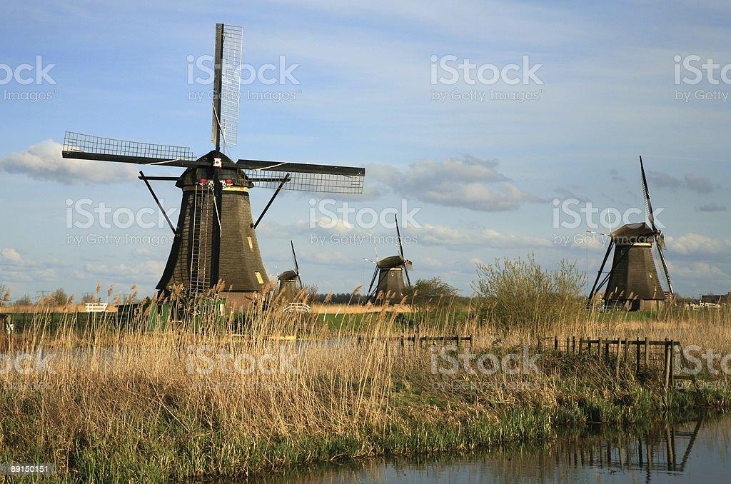 Dutch windmills royalty-free stock photo