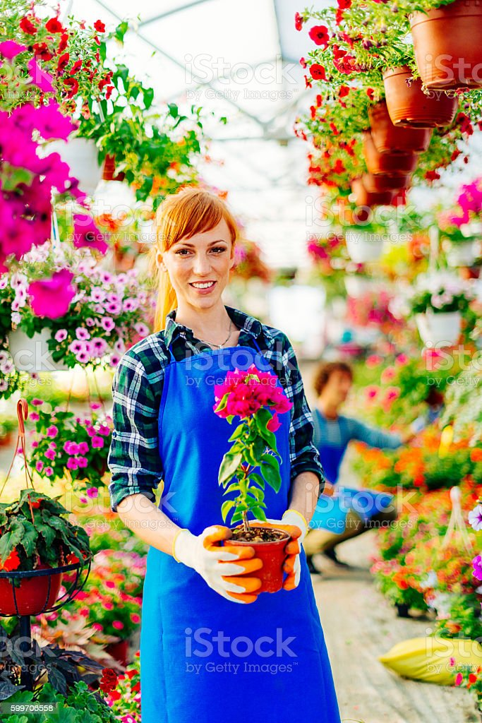 Dutch woman in plant nursery with flowers stock photo