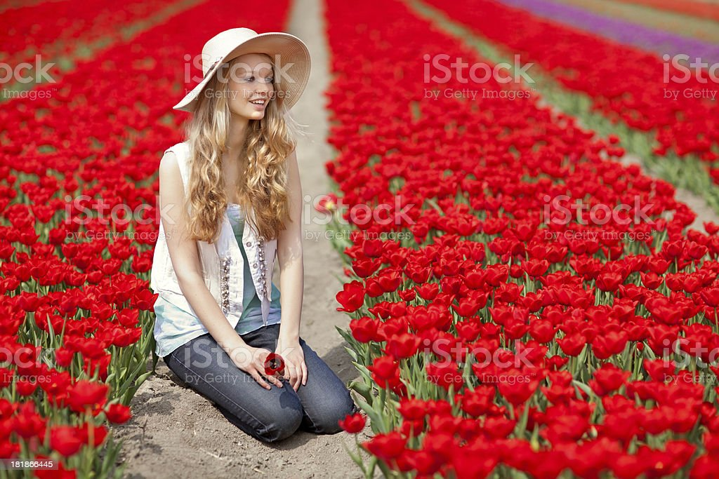 dutch woman sitting in the middle of  flower filed stock photo