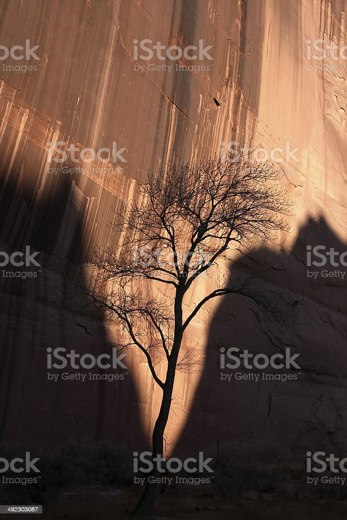 Dying of the Light stock photo