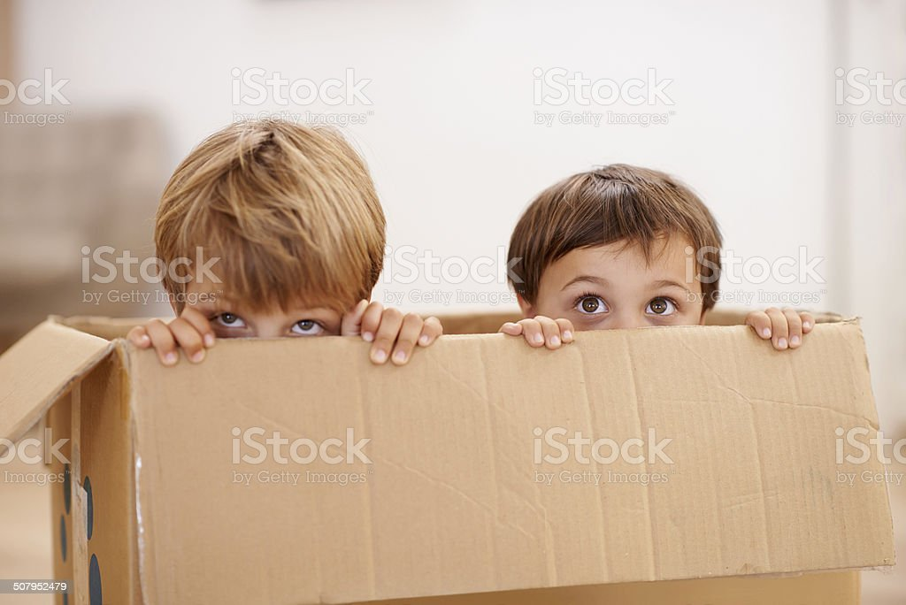 Dynamite comes in tiny, adorable packages stock photo