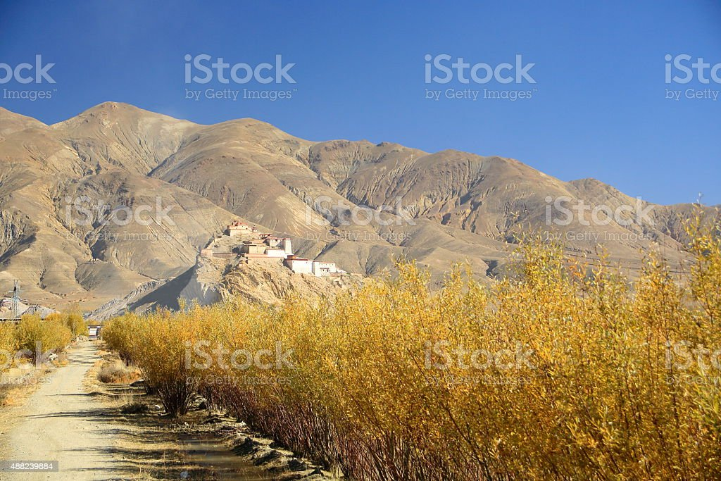 Dzong-fortress seen from afar. Gyantse-Tibet. 1652 stock photo