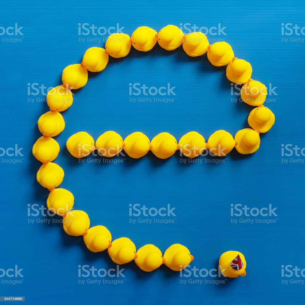 'e' shaped sign of rubber ducks,UK leaving, Brexit concept. stock photo