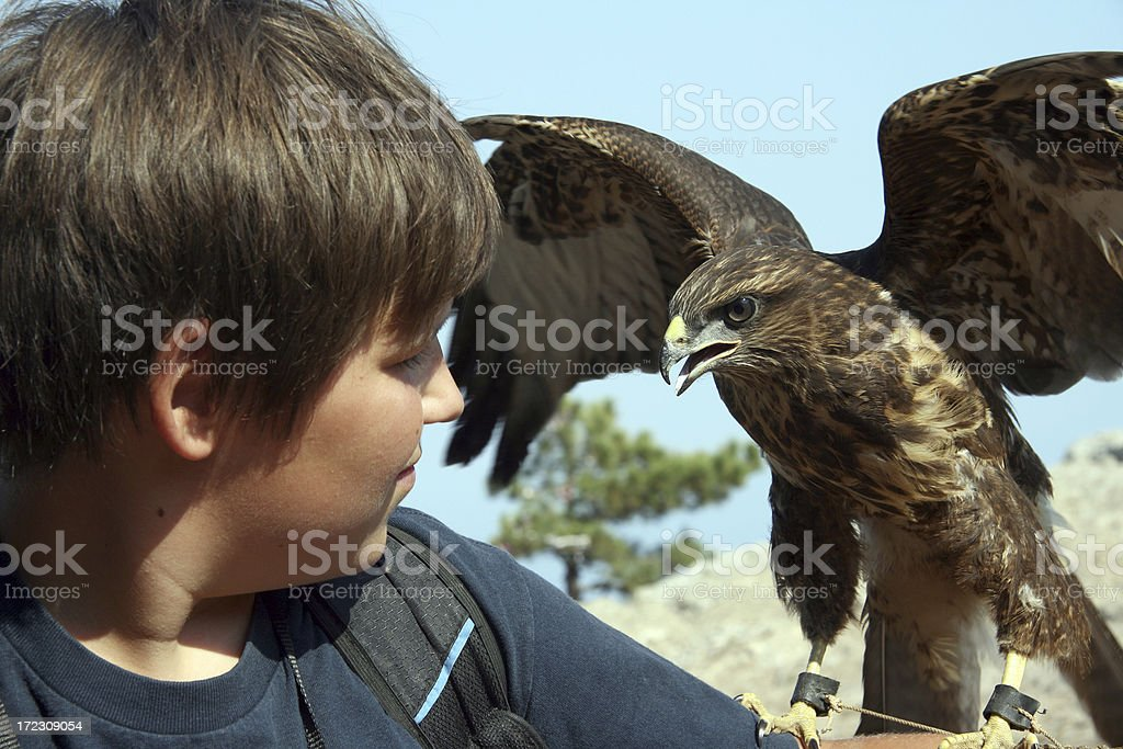eagle and boy stock photo