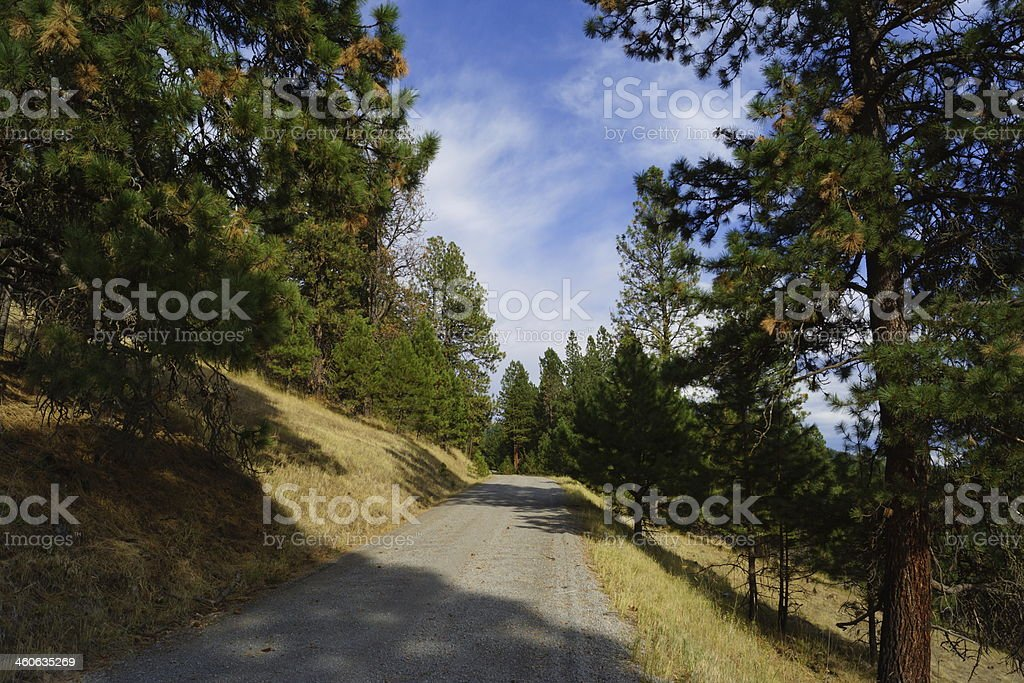 Eagle Cap Wilderness Road stock photo