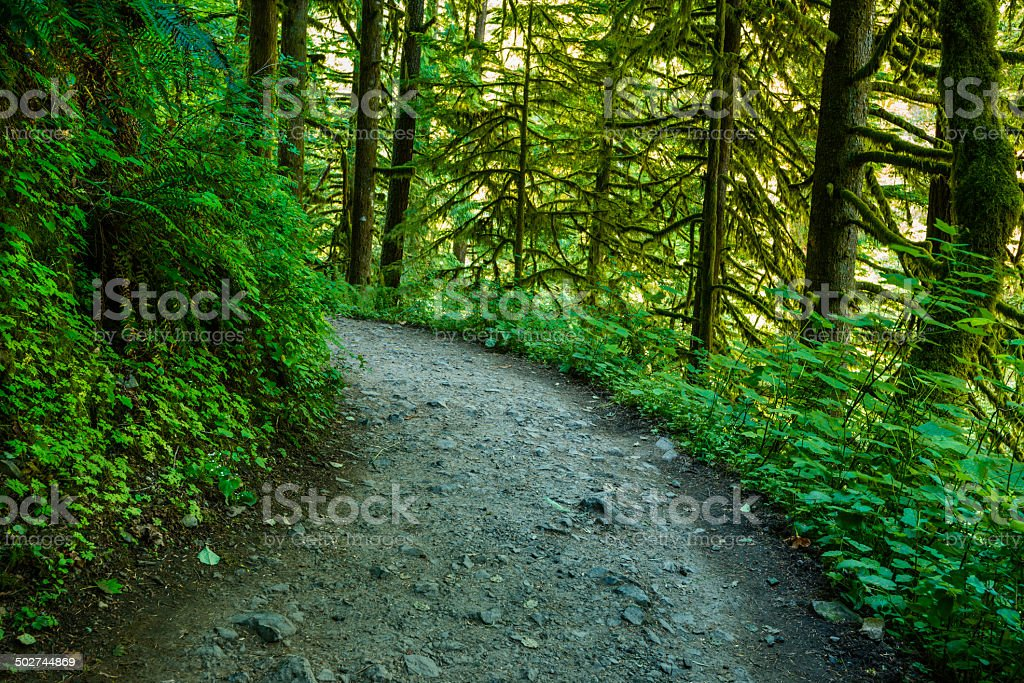 Eagle Creek Trail, Columbia River Gorge stock photo