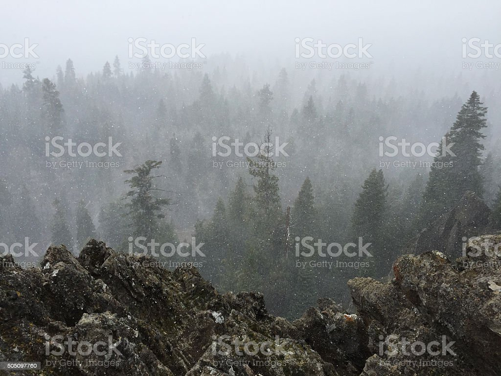 Eagle Rock Overlook in a Heavy Snowstorm royalty-free stock photo