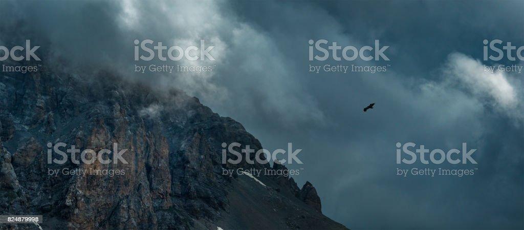 Eagle soaring near rock Zagedan. Dramatic overcast sky. Caucasus mountains. stock photo