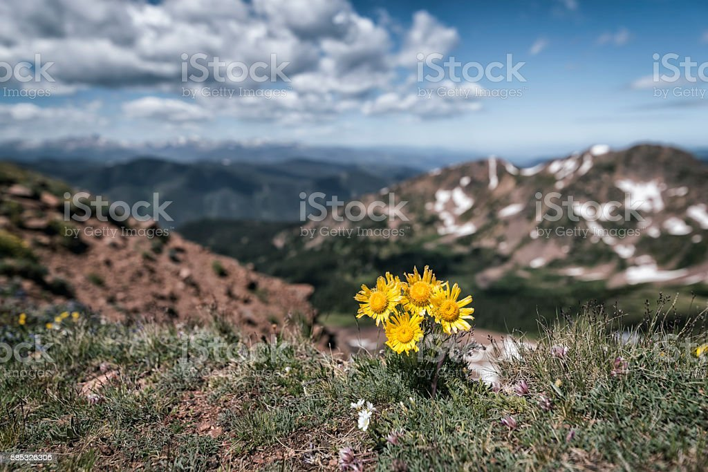 Eagles Nest Wilderness, Colorado stock photo