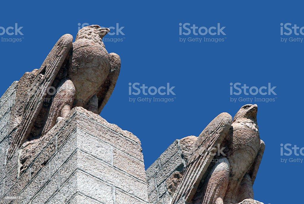 Eagles royalty-free stock photo