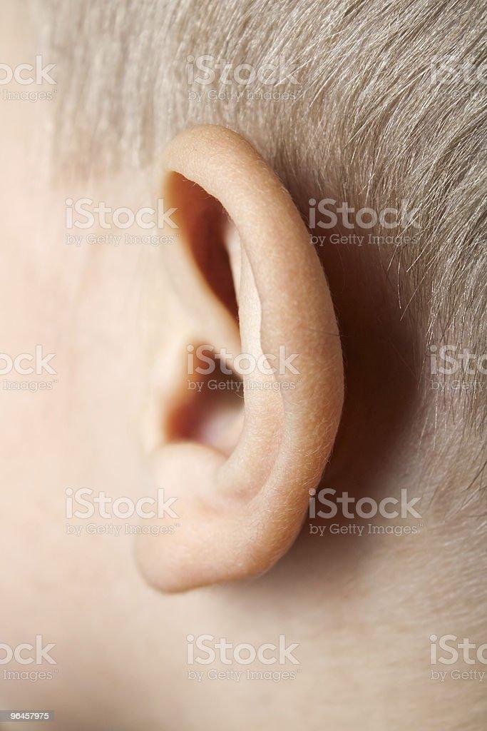 Ear macro royalty-free stock photo