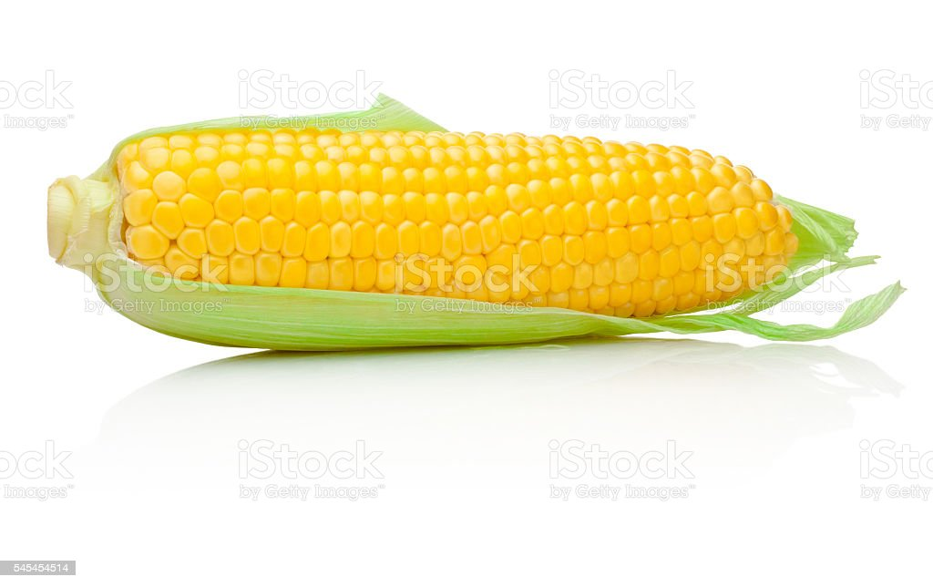 Ear of corn isolated on white background stock photo