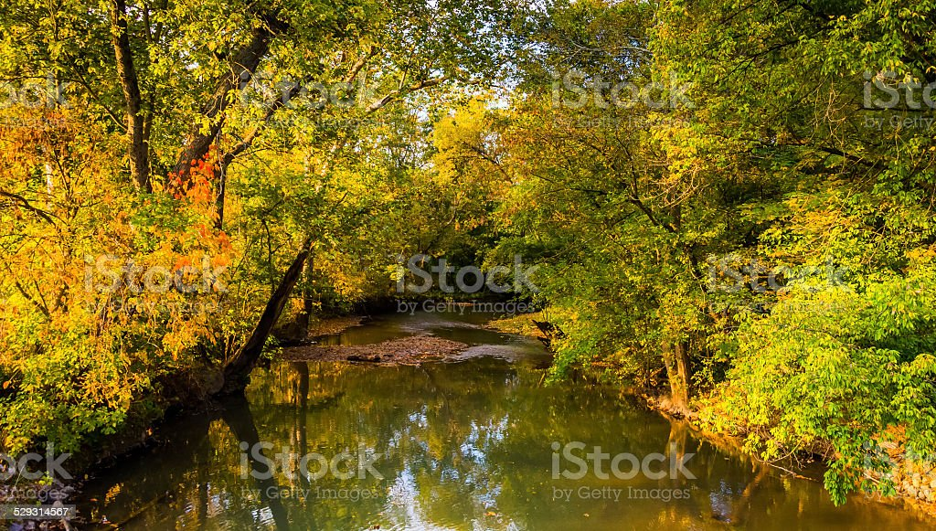 Early autumn color along a creek in rural Adams County stock photo