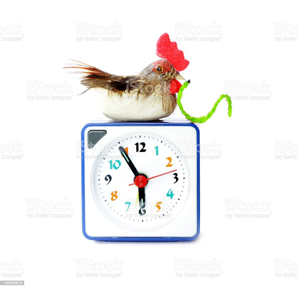 Early bird catches gets the worm proverb stock photo