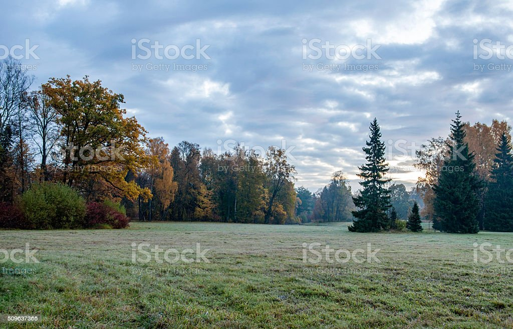 Early dawn stock photo