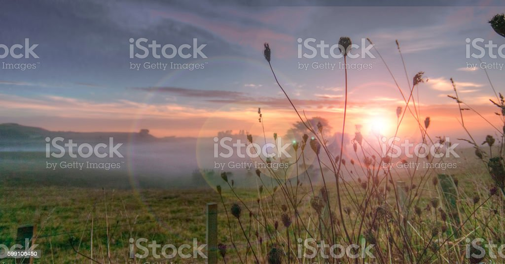 Early dawn with flare stock photo
