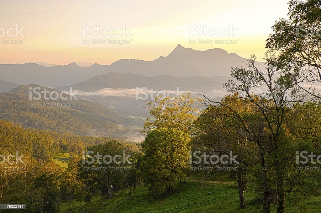 Early Evening at Mt Warning stock photo