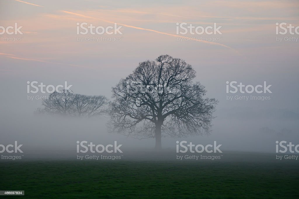 Early evening spring English sunset and mist stock photo
