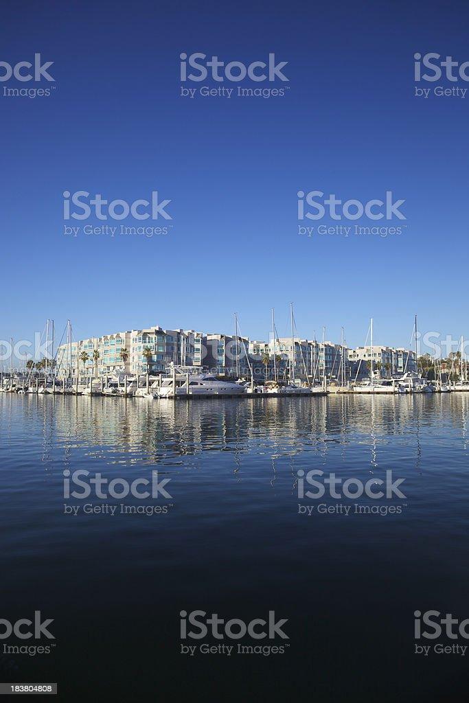 Early Marina Morning Blue royalty-free stock photo