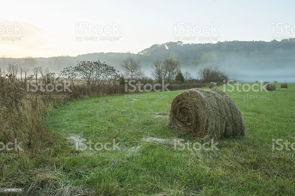 Early morning field in Brown County, Indiana stock photo