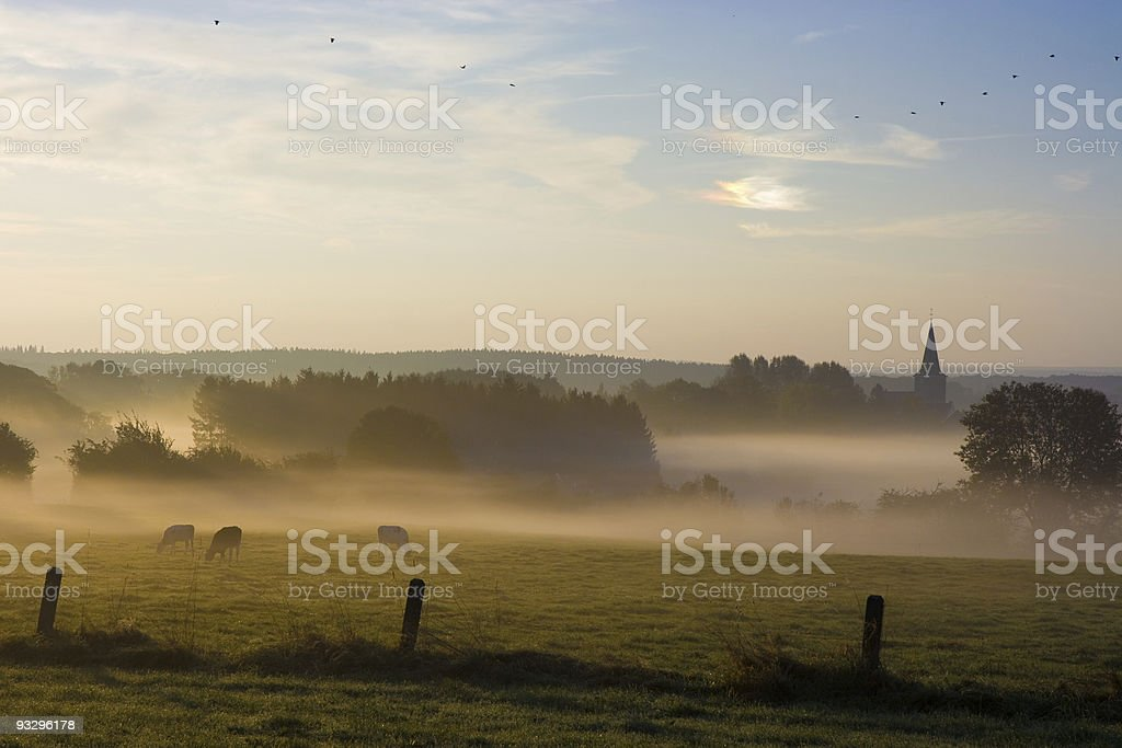 Early Morning Fog royalty-free stock photo
