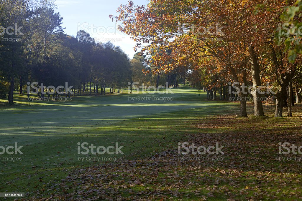 Early morning golfers royalty-free stock photo