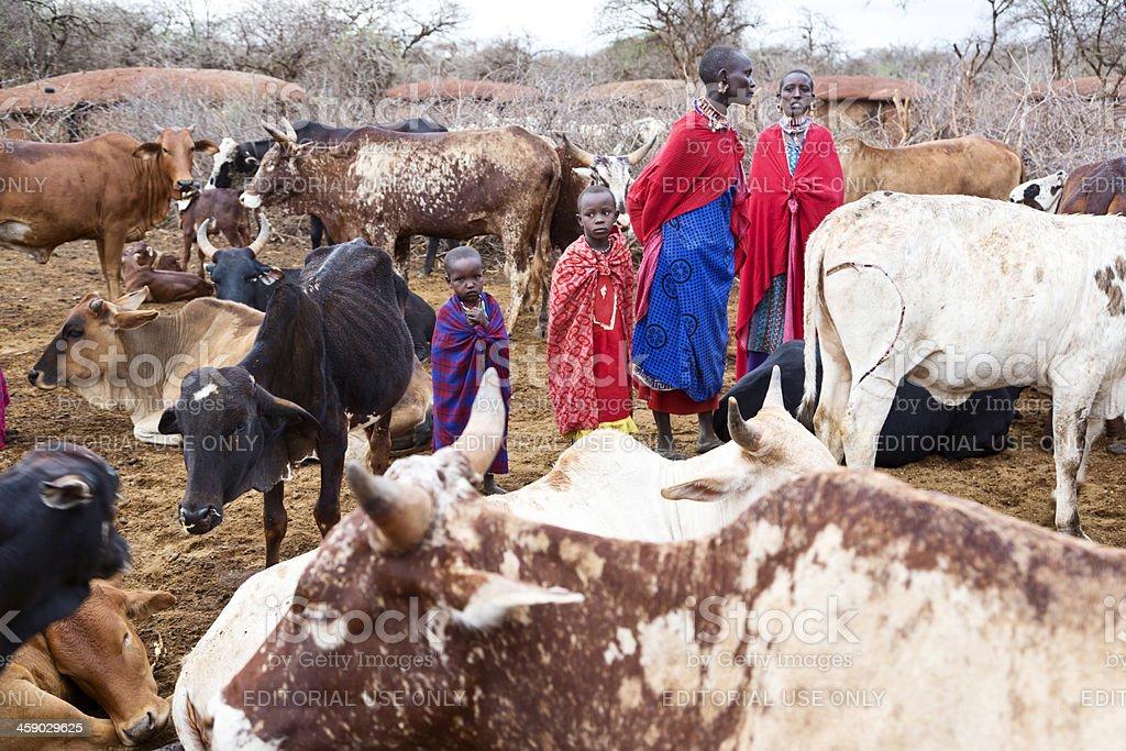 Early morning in Maasai village stock photo